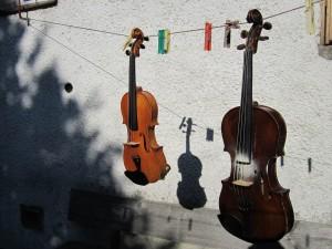 Geigenleine klein